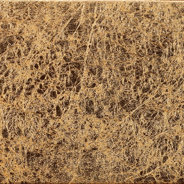 Detailaufnahme einer goldenen Wandlampe